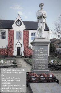 Cenotaph Poppy Nets